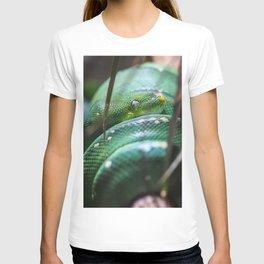 Slither T-shirt