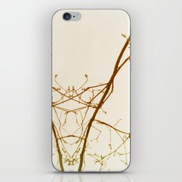 branches#01 iPhone Skin