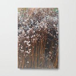 Summer Bloom Metal Print