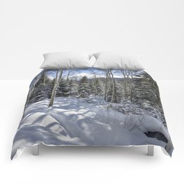 Winter forest - Carol Highsmith Comforters
