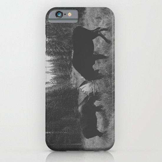 Moose Battle iPhone & iPod Case