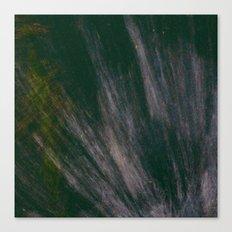 Puddle Spash  Canvas Print