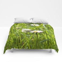 WHITE BUTTERFLY on COMMON DAISY Comforters