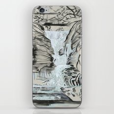 Local Gem # 5 - Lick Brook iPhone & iPod Skin