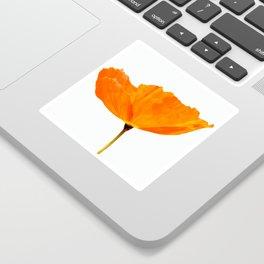One And Only - Orange Poppy White Background #decor #society6#buyart Sticker