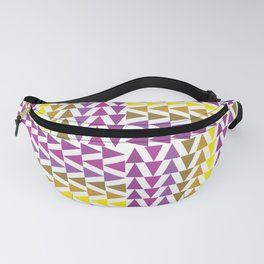 Triangle 1.0 Fanny Pack
