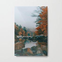 The Autumn Creek (Color) Metal Print