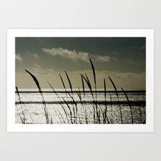 Grass and an Open Ocean Art Print