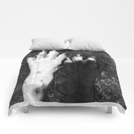 PAWS... Comforters