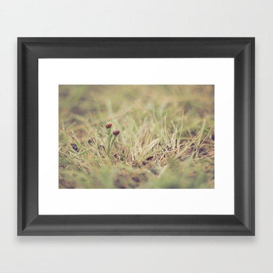 Ladybug Friends Framed Art Print