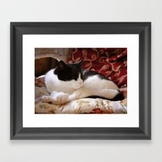 Oh, really? Framed Art Print