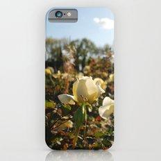 Rose Garden Sunshine Slim Case iPhone 6s