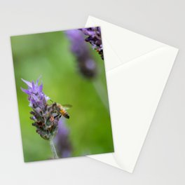 Bee and lavender Stationery Cards