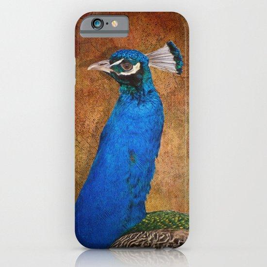 Peacock iPhone & iPod Case