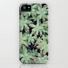 Succulent Abstract iPhone Case