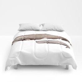 Sperm whale Comforters