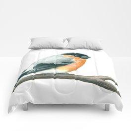 Bullfinch bird Comforters
