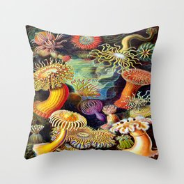 Under the Sea : Sea Anemones (Actiniae) by Ernst Haeckel Throw Pillow
