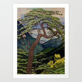 The Downwards Climbing Art Print