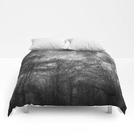 Flight Scratched Comforters