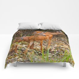 A Trio of Blacktail Deer in the Forest Comforters
