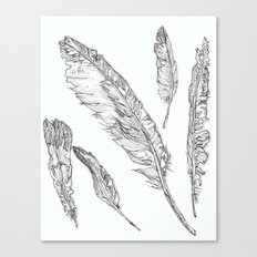 Swedish Feathers Canvas Print