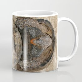 Humorous Mating Tortoises Coffee Mug