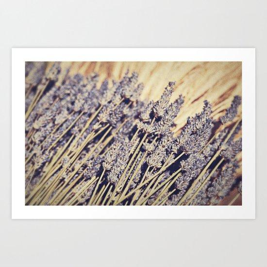 Lavender Flowers Art Print