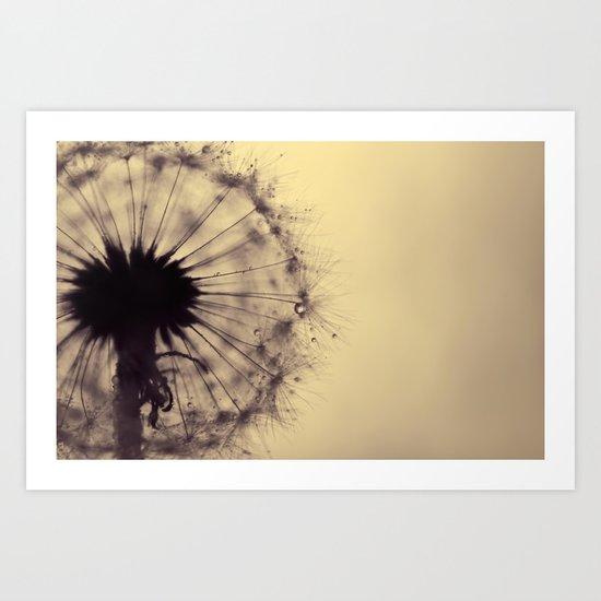 dusk - dandelion Art Print