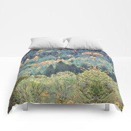 Highland Fling Comforters