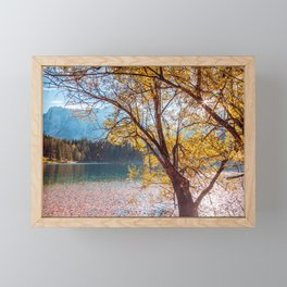 Colorful autumn foliage at the alpine lake Framed Mini Art Print
