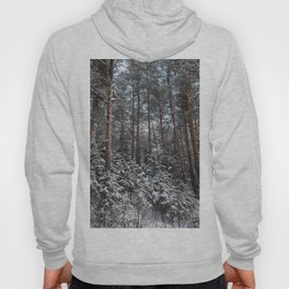 Winter in the wildwood. Hoody