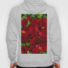 Red Hibiscus 18 Hoody