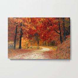Autumn Landscape 1   Paysage d'Automne 1 Metal Print