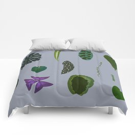 A non-scientific botanical investigation of the indoor plant. Comforters