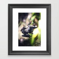 Sticky Frog Framed Art Print