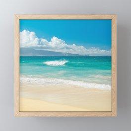 Hawaii Beach Treasures Framed Mini Art Print