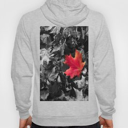 Singled Out Red Maple Leaf Hoody
