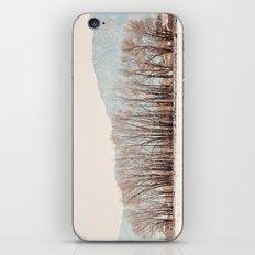 snowy iPhone & iPod Skin