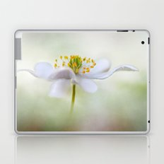 Nemorosa Laptop & iPad Skin