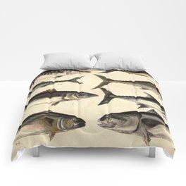 Vintage Illustration of Tunas, Mackerels & Bonitas Comforters
