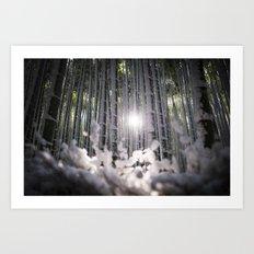 Arashiyama Bamboo in Winter Art Print