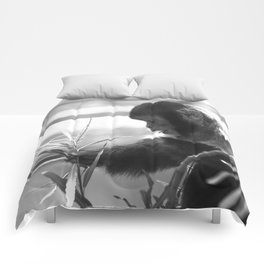 Wildlife Collection: Capuchin Monkey Comforters