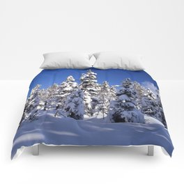 Snow covered trees in the forest. Winter day with blue sky. Comforters