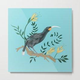 New Zealand Huia bird with blue background  Metal Print