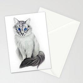 Ojos Azul Stationery Cards
