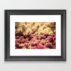 Serendipitous Moment Framed Art Print