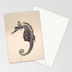 Water Pony Stationery Cards