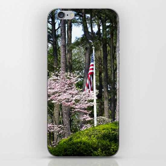 A Flag in the Forest iPhone & iPod Skin