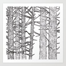 Black & White Trees Art Print